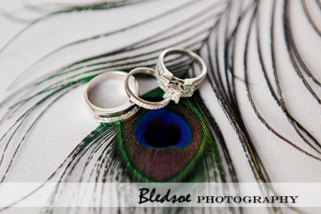 """wedding rings on peacock feathers"""